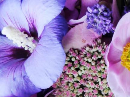 Flower Bouquets 2015